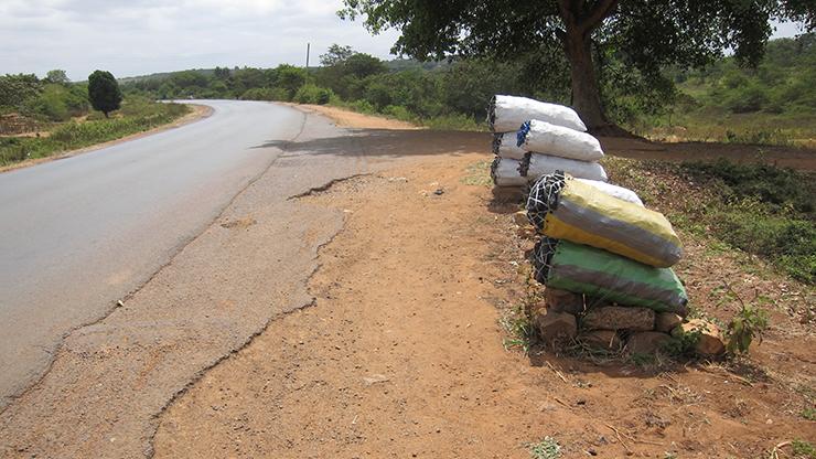 違法伐採された木で作ったとみられる炭(ケニア)